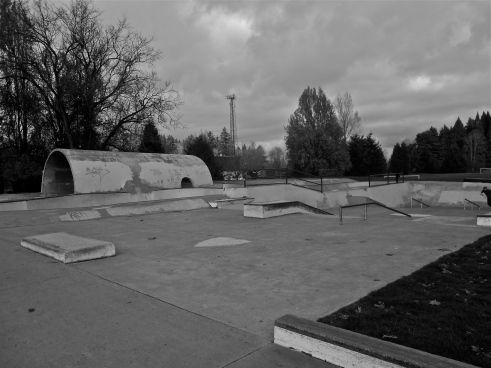 Pier Park Skatepark. North Portland, March 2013 Photo by W.C. Lawson